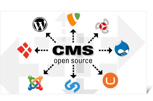 Автоматическая установка CMS